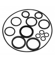 Seal Kit For Helm Pump - SKH001